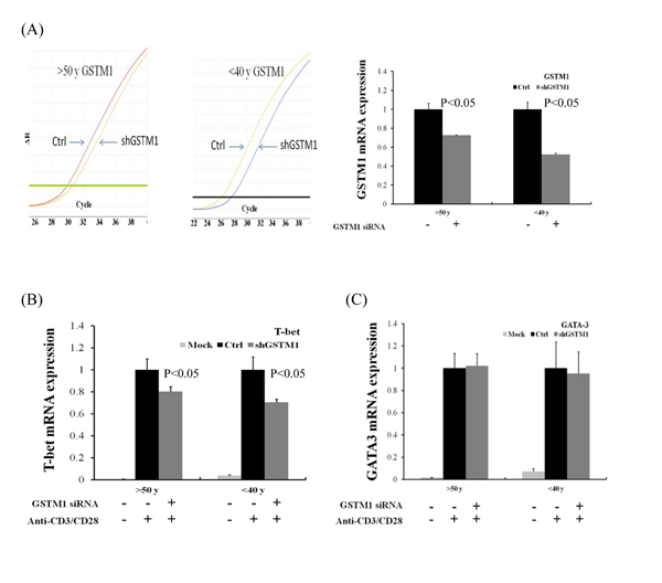 Effect of GSTM1 gene knockdown on CD4 T cells differentiation as shown by T-bet and GATA-3 expression.