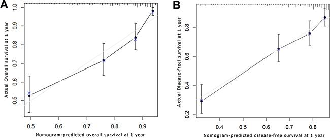 Survival nomogram calibration curve of adolescent and young adult (AYA) hepatocellular carcinoma (HCC) patients.