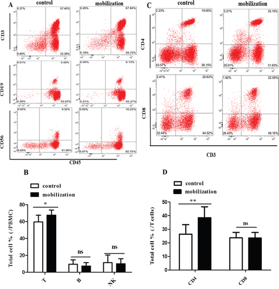 Effect of G-CSF mobilization on lymphocyte and T cell subtypes.