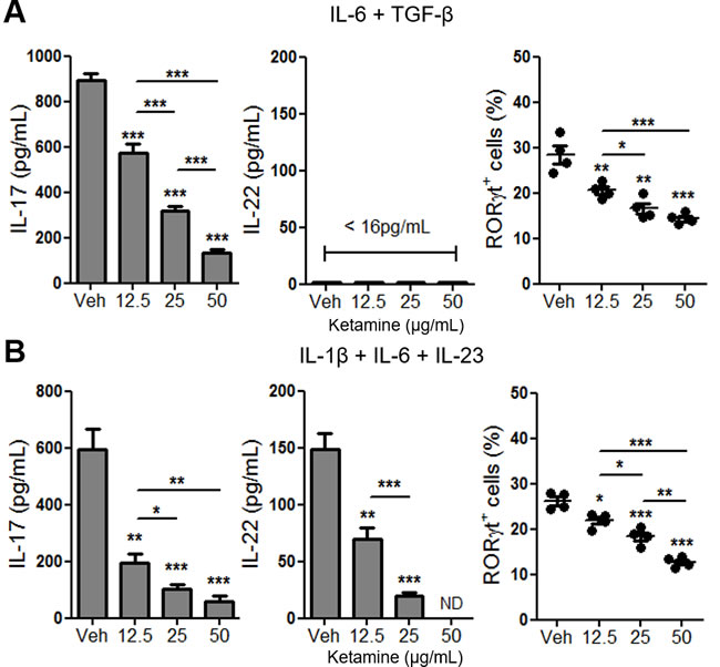 Ketamine inhibits Th17 cell differentiation induced by IL-6, IL-1β and IL-23 in the absence of exogenous TGF-β.