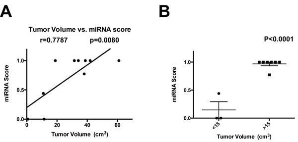 Correlation of miRNA score with tumor volume.