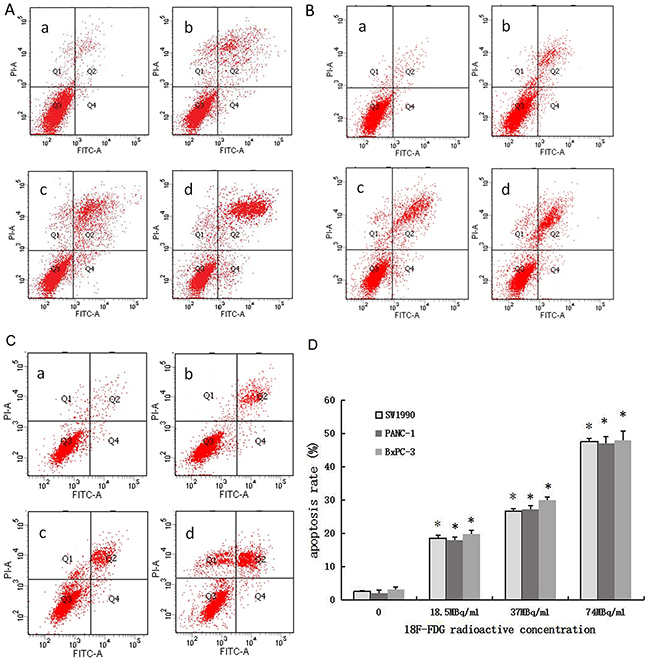 Positron induces apoptosis of pancreatic cancer cells in a dose-dependent manner.