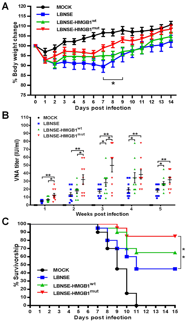 Pathogenicity and immunogenicity of different rRABVs in mice.