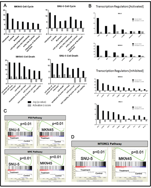 Pathway analyses of crizotinib-induced changes in gene expression.