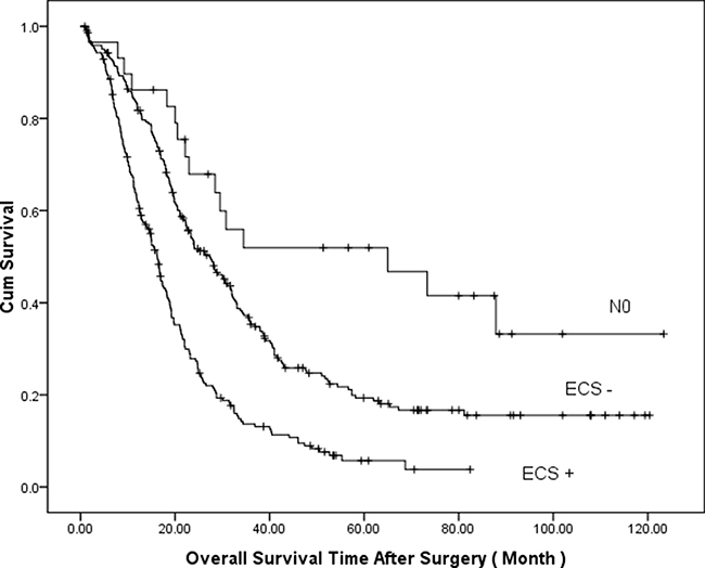 Comparison of cumulative survival based on lymph node status (P = 0.000, log-rank test).