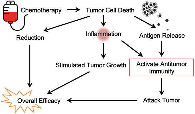 How To Increase Immunity To Truth Decay >> Oncotarget Tumor Reductive Therapies And Antitumor Immunity