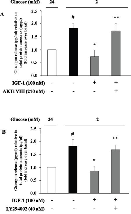 High IGF-1 concentrations inhibit glucagon secretion.