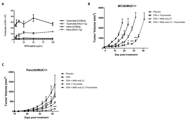 The combination of NHS-muIL12 with an experimental cancer vaccine enhances the anti-tumor response.