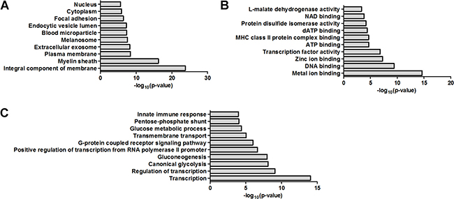 Bioinformatics analysis of the dysregulated proteins by GO analysis.