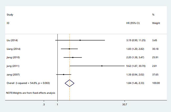 The forest plot of HRs for DFS.