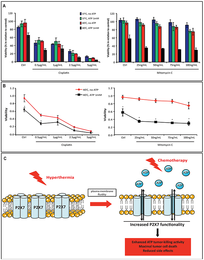 Combination of hyperthermia and ATP with chemotherapy drugs enhances the therapeutic efficacy.