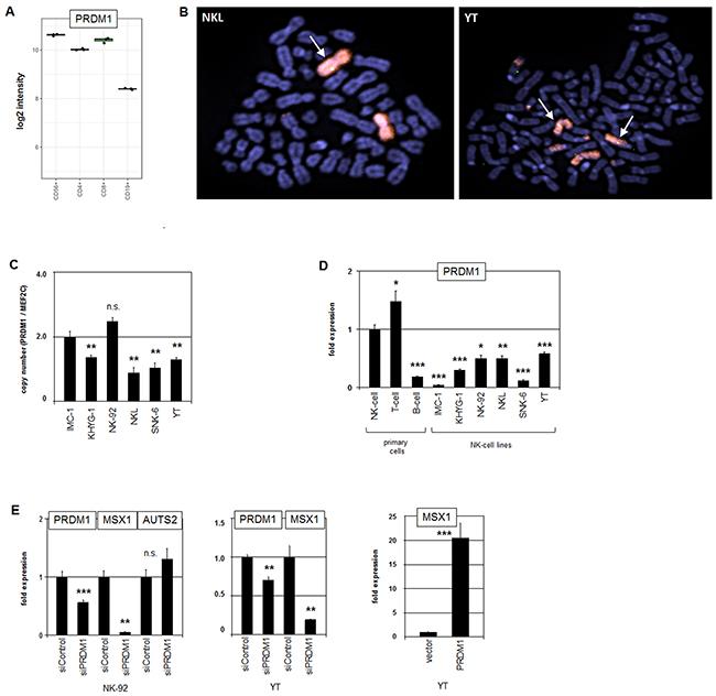 Analysis of PRDM1: expression, genomics and target gene regulation.