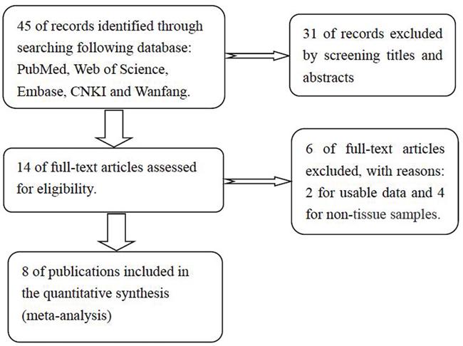 The flow diagram of this meta-analysis.