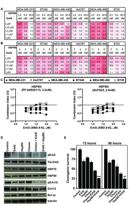 The combination of Hsp90 inhibition and Erk5 inhibition is synergistic in TNBC.