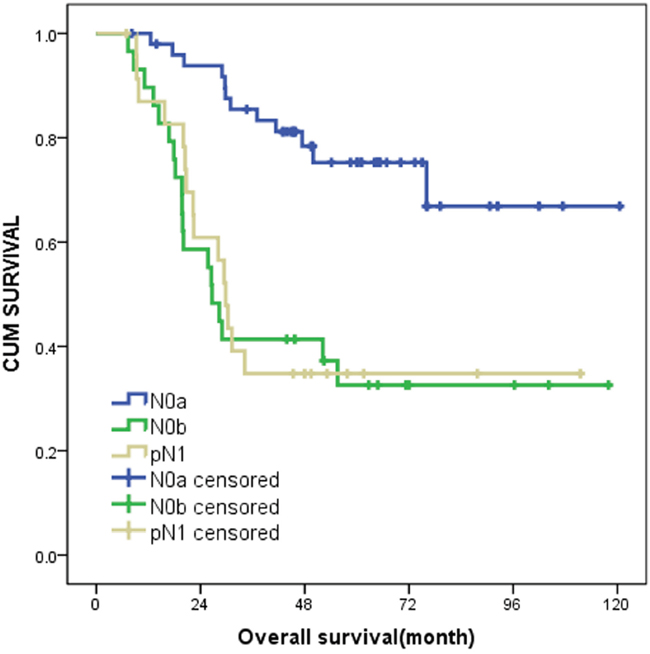 Kaplan-Meier curves of N0a, N0b and pN1 on survival outcomes.