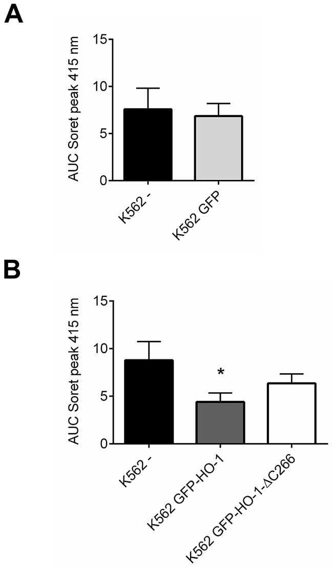 Comparison between HO-activity of untransfected or GFP expressing control cells and K562 cell lines expressing ER resident HO-1 or the anchorless HO-1 variant.