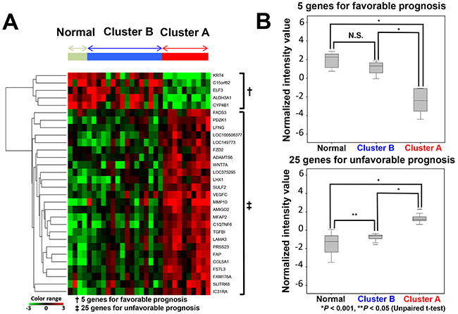 Relationship of the expression of 30 genes between cluster A, cluster B and normal tissues.