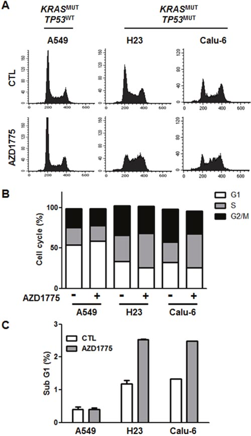 AZD1775 has no effect on cell cycle.