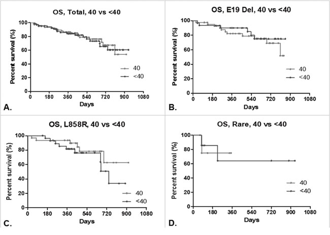 Overall survival (OS) of lung adenocarcinoma patients.