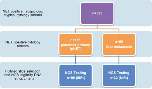 Flow chart to highlight pancreas and liver cytology smear acquisition to completion of targeted NGS.