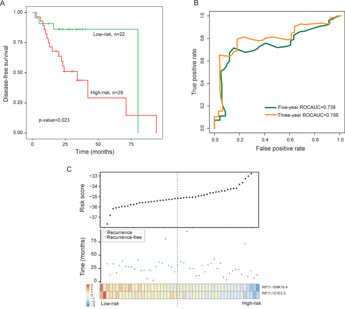 Prognostic assessment of the two-lncRNA signature in the training dataset.