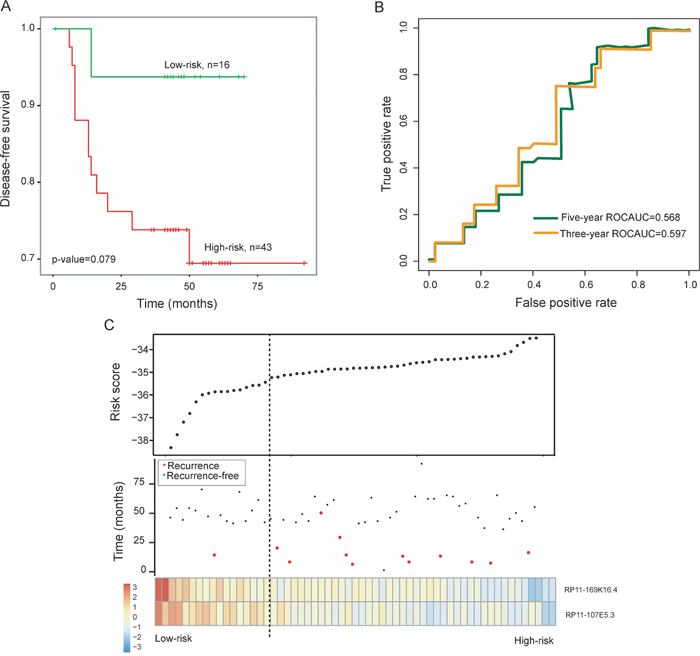 Prognostic assessment of the two-lncRNA signature in the testing dataset.