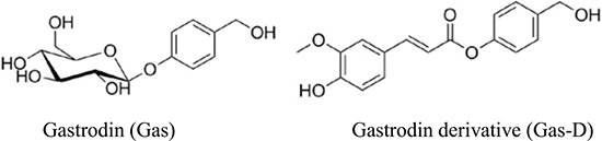 Chemical structures of gastrodin (Gas) and its derivative (Gas-D).