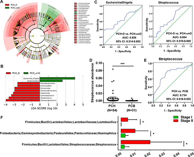 Identification of crucial bacteria associated with the bile in the gut for PC.