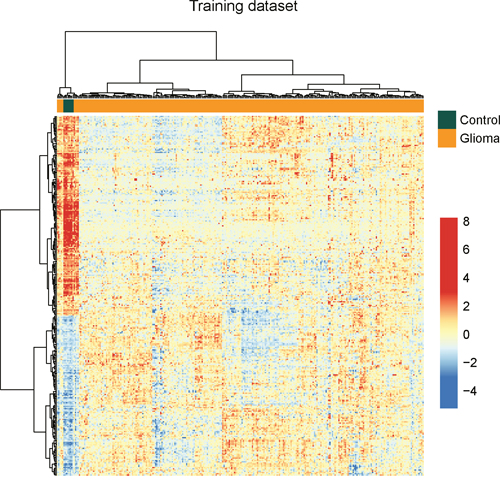 The heatmap of hierarchical clustering of differentially expressed lncRNAs between glioma samples and normal brain tissues in the training dataset.