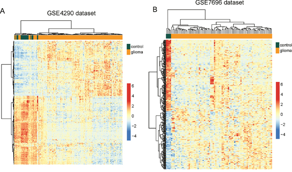 Validation of differentially expressed lncRNAs between glioma samples and normal brain tissues in the two testing datasets.