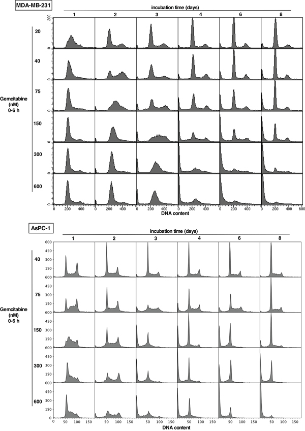 Impact of gemcitabine on cell cycle perturbation in MDA-MB-231 and AsPC-1 cells.