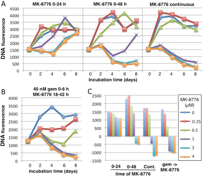 Comparison of the cytotoxicity induced by MK-8776 as a single agent versus its efficacy in combination with gemcitabine.