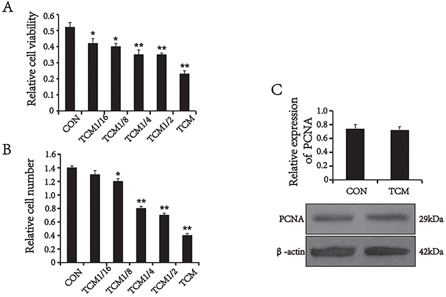 The effect of TCM on VSMC proliferation and the expression of PCNA.