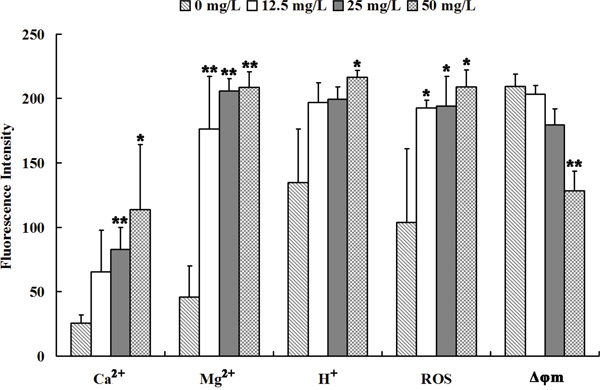 Se2Mo10V3 increased Ca2+, Mg2+, H+, and ROS levels and decreased Δφm in K562 cells in a CLSM experiment.