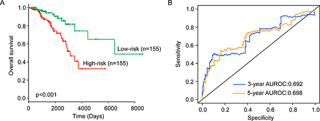 The performance of the six-lncRNA signature for survival prediction in the training dataset.