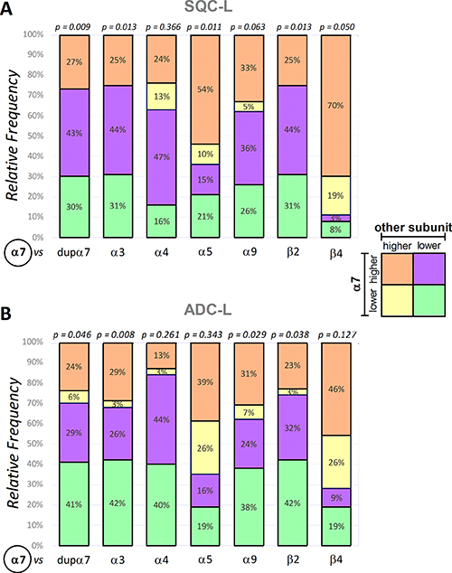 Frequency distribution of α7 expression versus expression of each of the remaining nAChR subunits in the SQC-L and ADC-L tumors.
