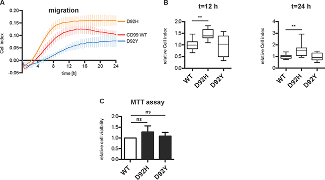 Overexpression of D92H variant increases cell migration in HeLa cells.