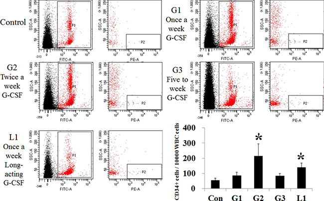 Comparison of stem cell mobilization after administration of hepatotropic dose of G-CSF.