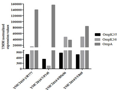 Trimmed mean of M-value-normalized values of the four carbapenem-resistant