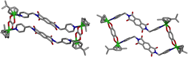 Single Crystal X-ray structures of metallacycles 2 and 3.