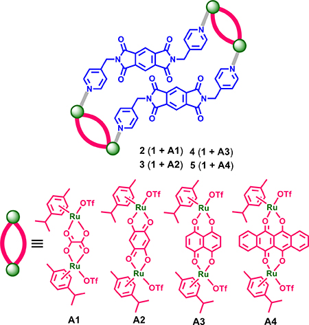 Scheme 2: Self-assembled ruthenium (II) metallacycles 2-5.