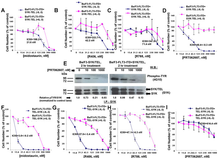 Effects of midostaurin, R406, R788, and PRT062607 on inhibition of proliferation of Ba/F3 cells expressing TEL-SYK or SYK-TEL co-expressed with FLT3-ITD.
