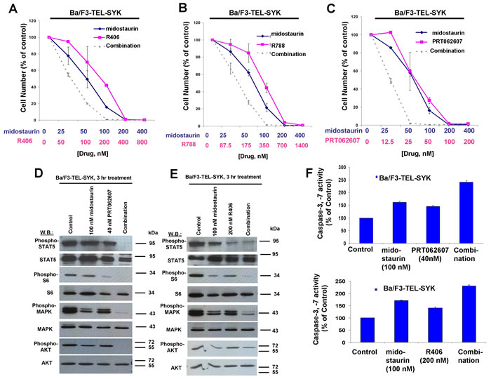 Potentiation of effects of midostaurin against Ba/F3-TEL-SYK cells by R406, R788, and PRT062607.