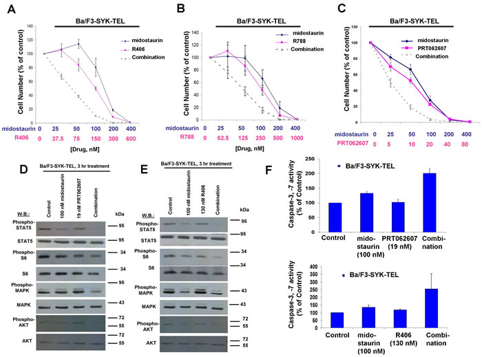 Potentiation of effects of midostaurin against Ba/F3-SYK-TEL cells by R406, R788, and PRT062607.