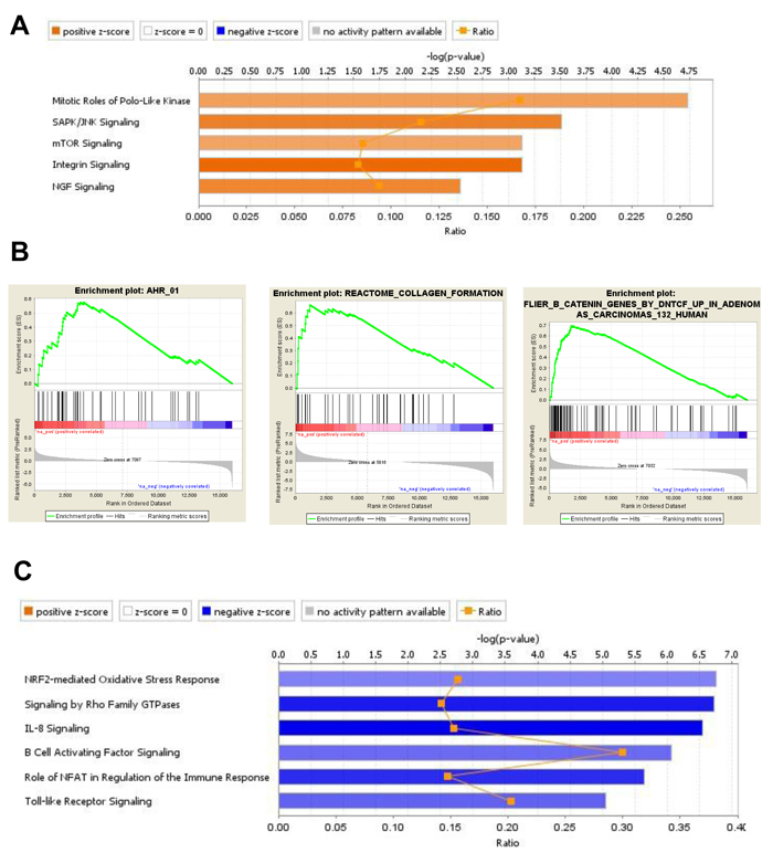 Gene expression analysis of DEG in BM-MSC from mice engrafted with MLL/ENL+FLT3-ITD