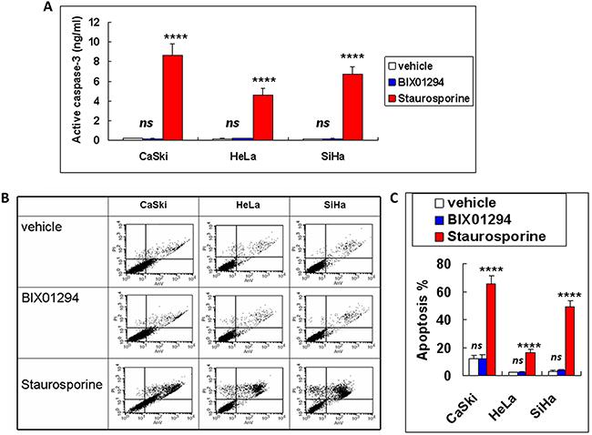 Apoptotic effect of BIX01294 on cervical cancer cells.