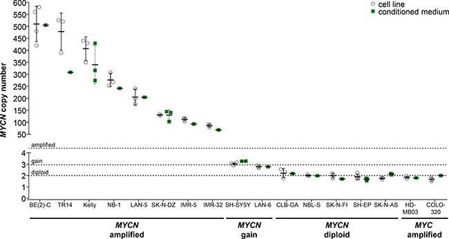 Comparison of absolute MYCN copy numbers determined by ddPCR for neuroblastoma cell lines.