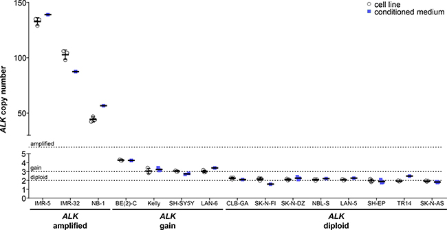 Comparison of absolute ALK copy numbers determined by ddPCR for neuroblastoma cell lines.