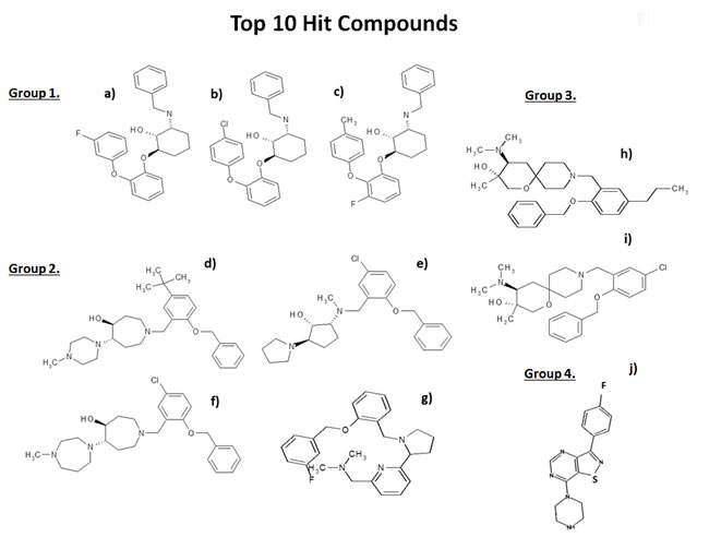 Chemical structures of the top 10 hits.