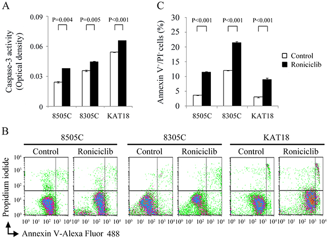 Roniciclib activates caspase-3 activity and induces apoptosis in ATC cells.